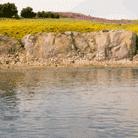 Water basis