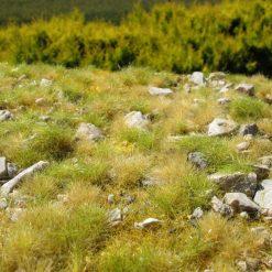 Grasmatten met kalksteen